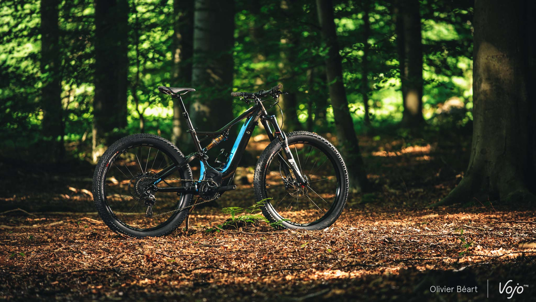 Specialized_Turbo_Levo_FSR_Copyright_Beart_VojoMag-8