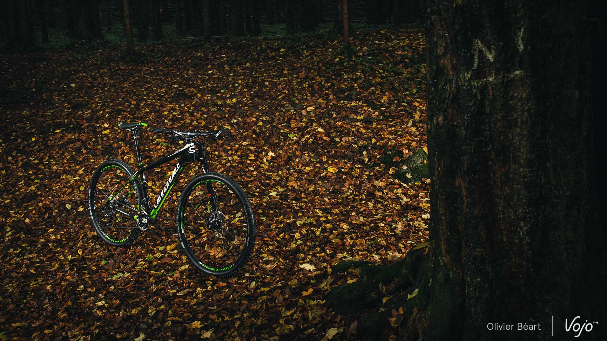 Cannondale_F-Si_Carbon_4_Test_Copyright_OBeart_VojoMag-6b