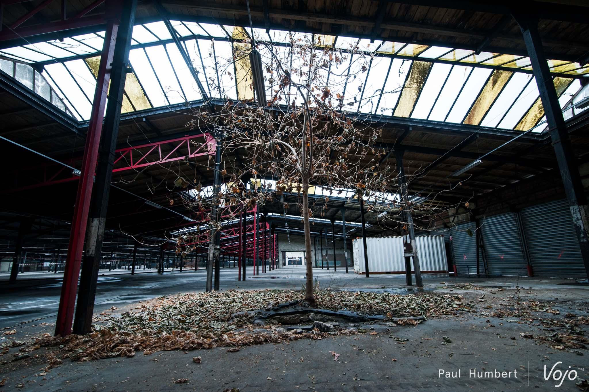 stride-bike-park-indoor-strasbourg-2016-vojo-paul-humbert-12