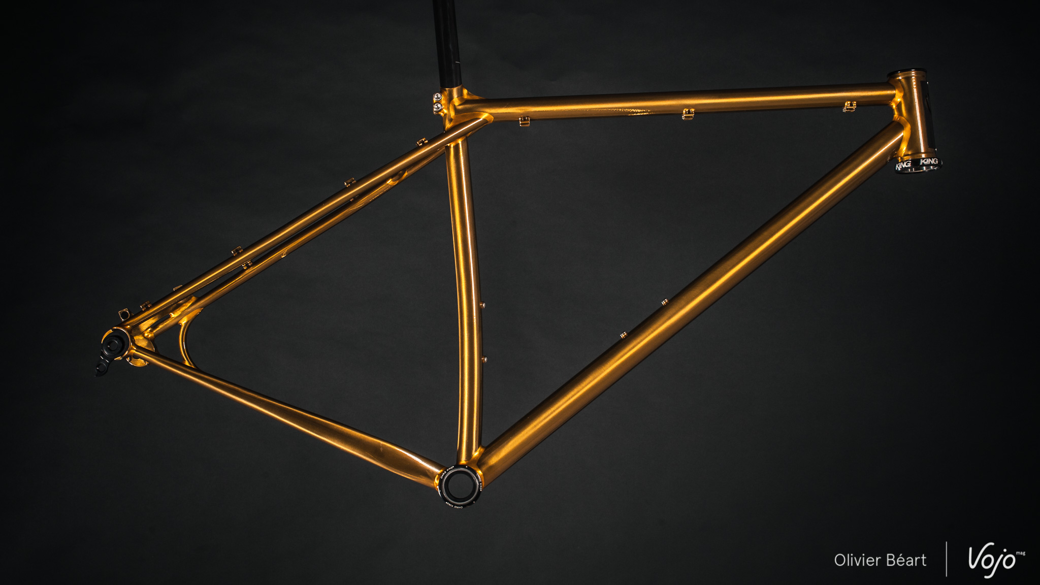 Victoire_Cycles_Gold_Copyright_OBeart_VojoMag-1
