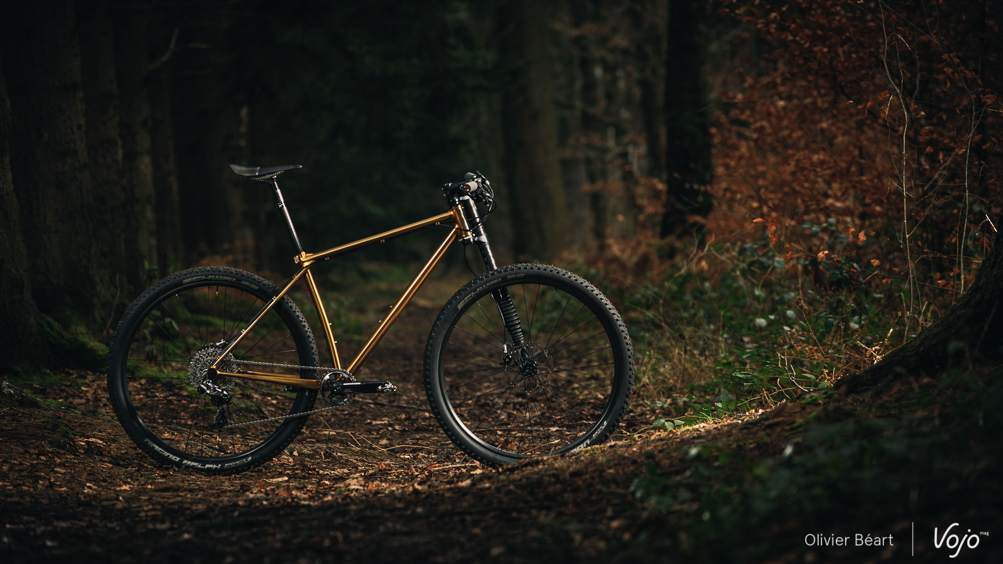 Victoire_Cycles_Gold_Copyright_OBeart_VojoMag-13