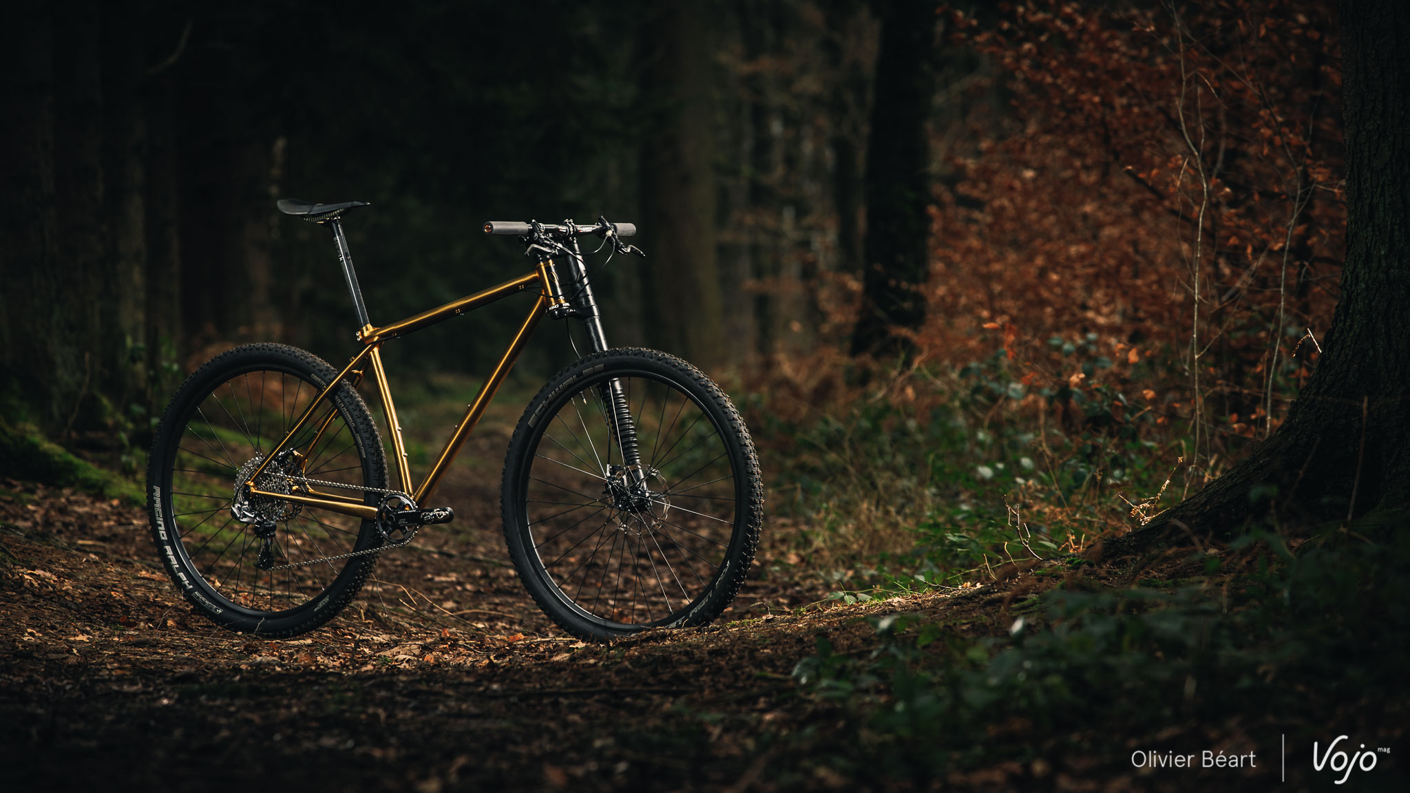 Victoire_Cycles_Gold_Copyright_OBeart_VojoMag-14