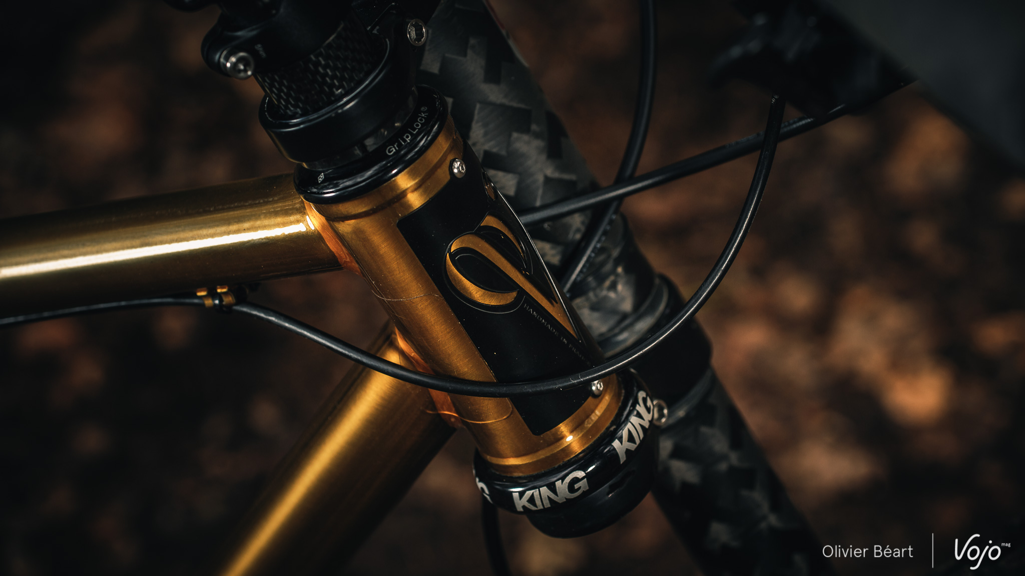 Victoire_Cycles_Gold_Copyright_OBeart_VojoMag-15