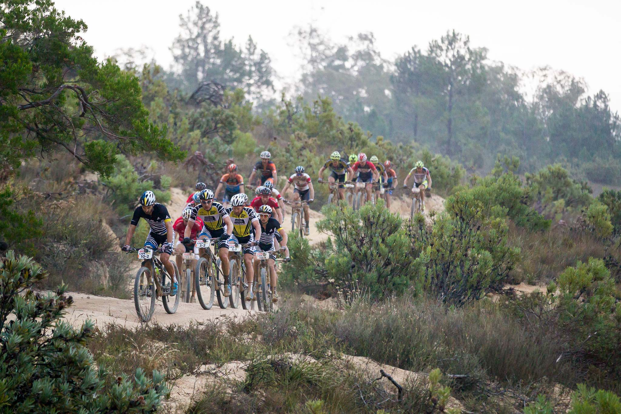 The lead bunch during stage 5 of the 2016 Absa Cape Epic Mountain Bike stage race held from the Cape Peninsula University of Technology in Wellington to Boschendal in Stellenbosch, South Africa on the 18th March 2016 Photo by Nick Muzik/Cape Epic/SPORTZPICS PLEASE ENSURE THE APPROPRIATE CREDIT IS GIVEN TO THE PHOTOGRAPHER AND SPORTZPICS ALONG WITH THE ABSA CAPE EPIC ace2016