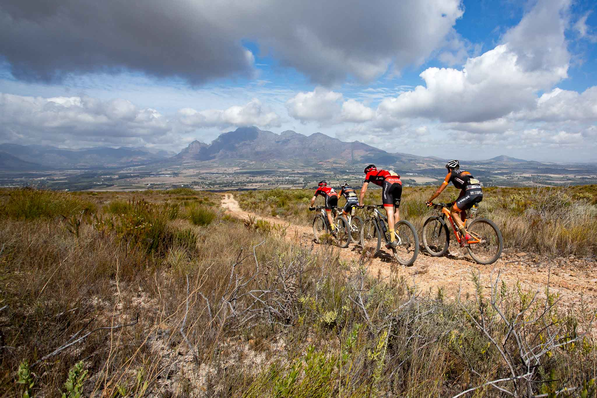 The chasing group of Trek Selle San Marco B and Centurian Vaude A during stage 5 of the 2016 Absa Cape Epic Mountain Bike stage race held from the Cape Peninsula University of Technology in Wellington to Boschendal in Stellenbosch, South Africa on the 18th March 2016 Photo by Nick Muzik/Cape Epic/SPORTZPICS PLEASE ENSURE THE APPROPRIATE CREDIT IS GIVEN TO THE PHOTOGRAPHER AND SPORTZPICS ALONG WITH THE ABSA CAPE EPIC ace2016