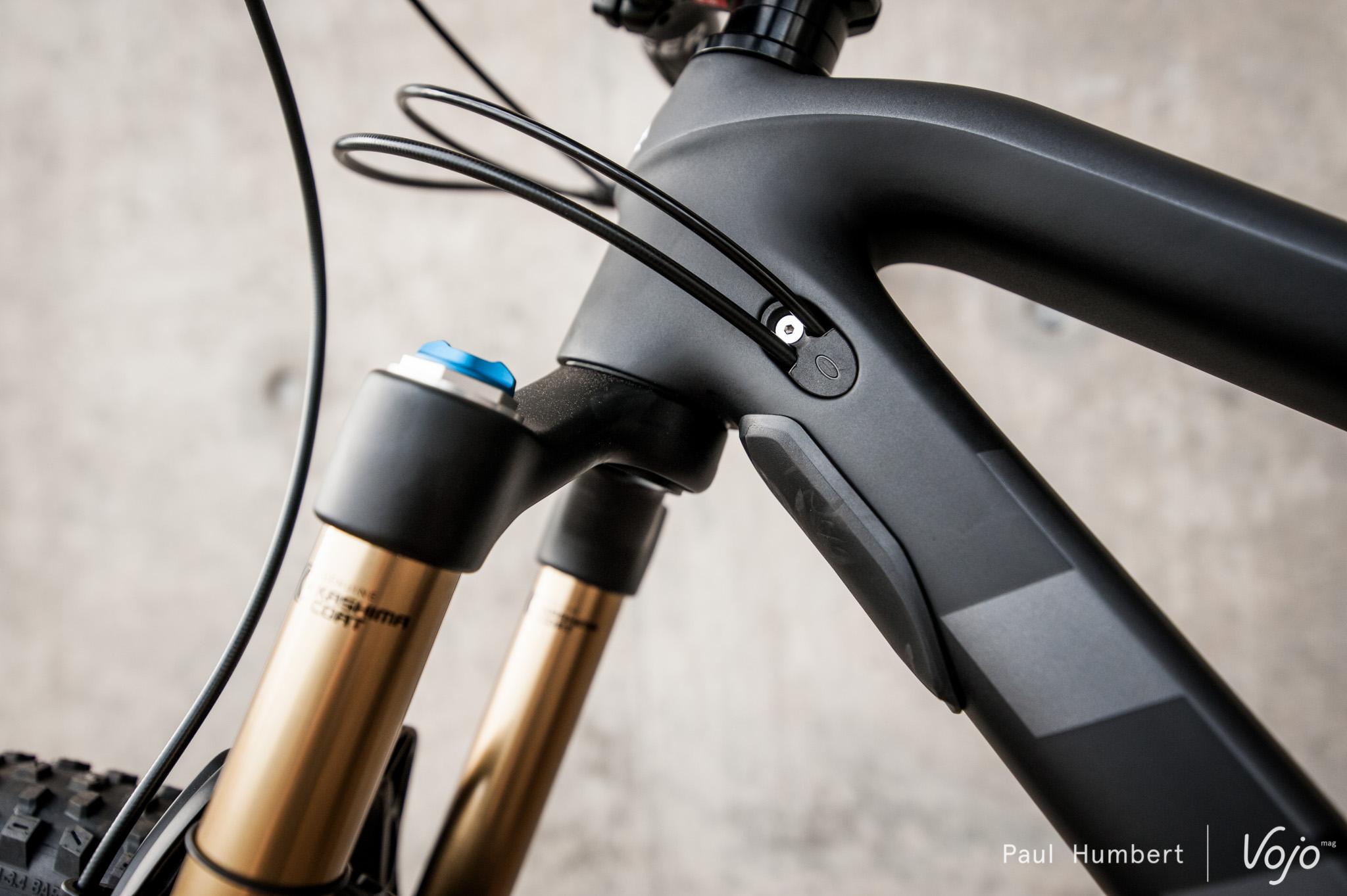 Trek-fuel-ex-vojo-2016-paul-humbert-38