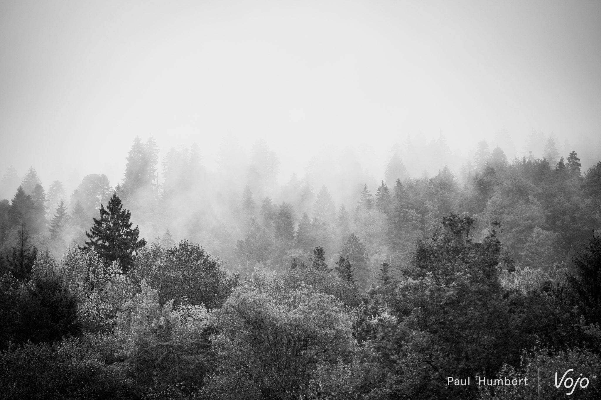 la-forestiere-2016-vojo-paul-humbert-110